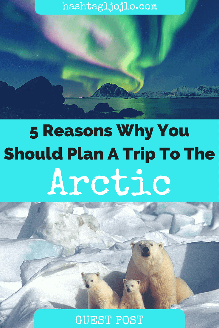 5 Reasons Why You Should Plan A Trip To The Arctic